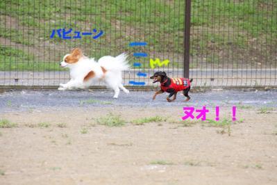 IMG_213201.jpg