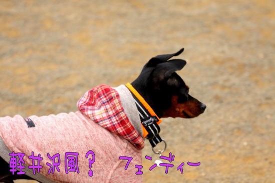 IMG_316815.jpg