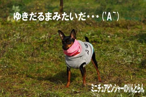 IMG_497143.jpg