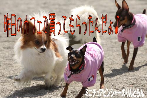 IMG_575201.jpg