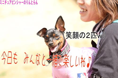 IMG_586911.jpg