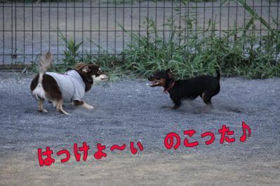 IMG_7127.jpg