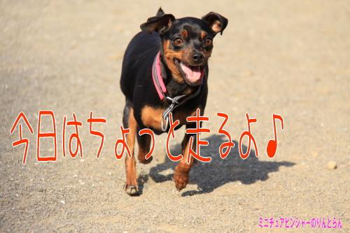 IMG_7944.jpg