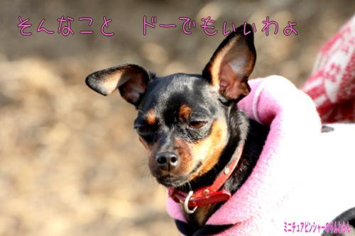 IMG_8551014.jpg