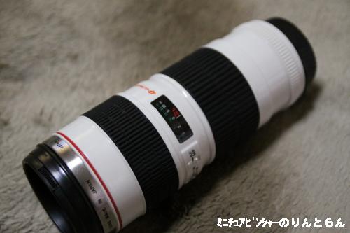 IMG_8657.jpg