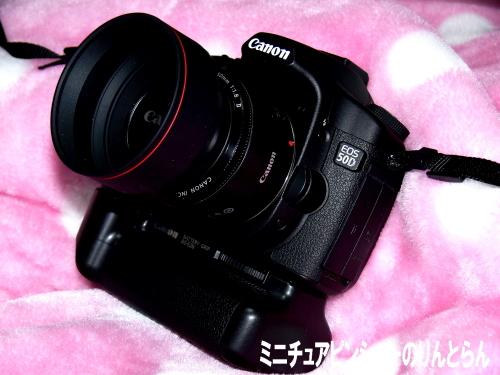 P1110500.jpg