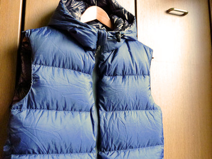 FEATHERED FRIENDSのHooded Hyperion Vest。