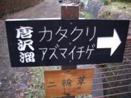 ★カタクリ看板★