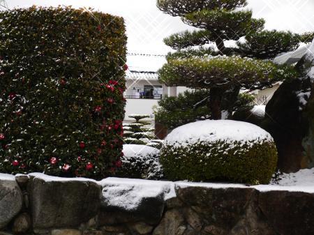 雪だぁ!!