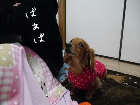 バァバとはいチーズ!!