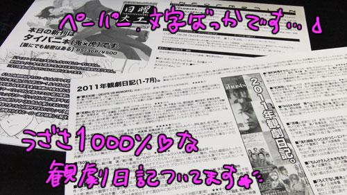 20110810ペーパー
