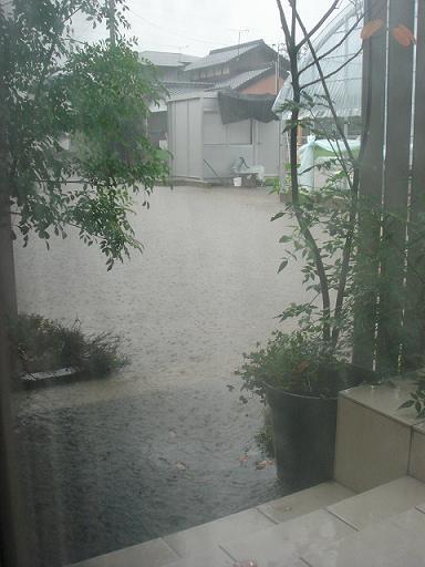 11 7 6大雨