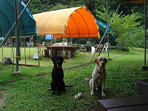 11.8.5犬太&翔太