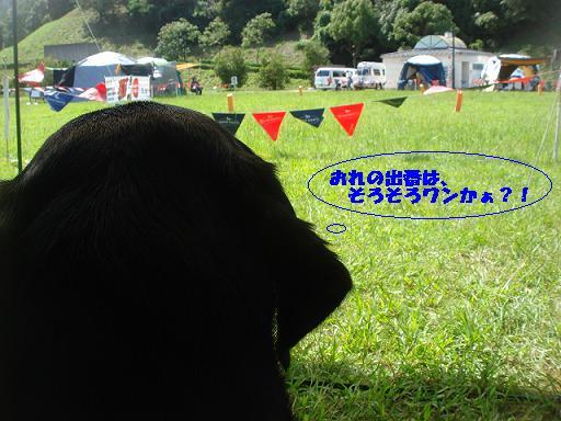 2011 9.10.11広域公園コジ