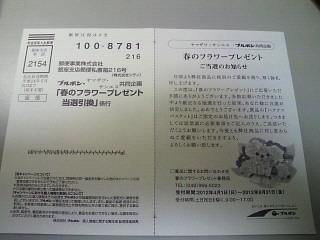 NEC_1002.jpg