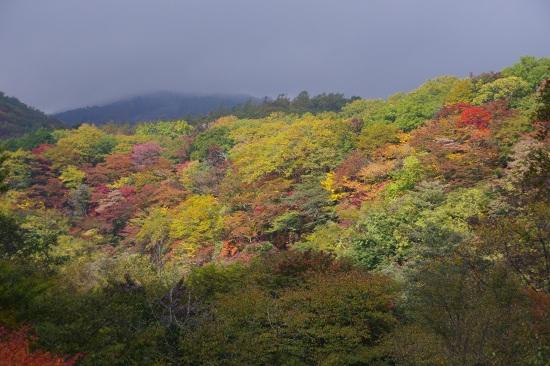 2012-10-23-1s.jpg