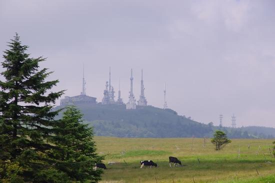 2012-8-8-9s.jpg