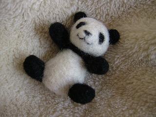 パンダ 正面