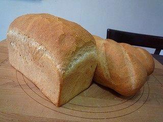 小麦胚芽のパン100316