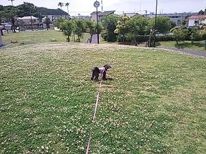 初夏の佐島の丘公園1
