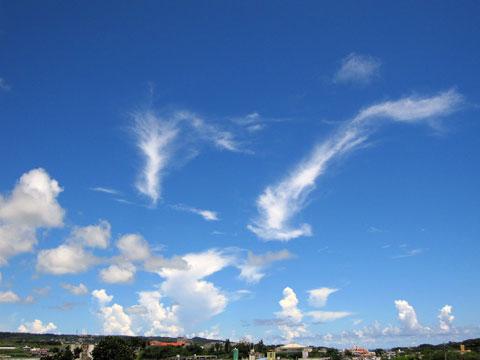 2012.8.20 竜