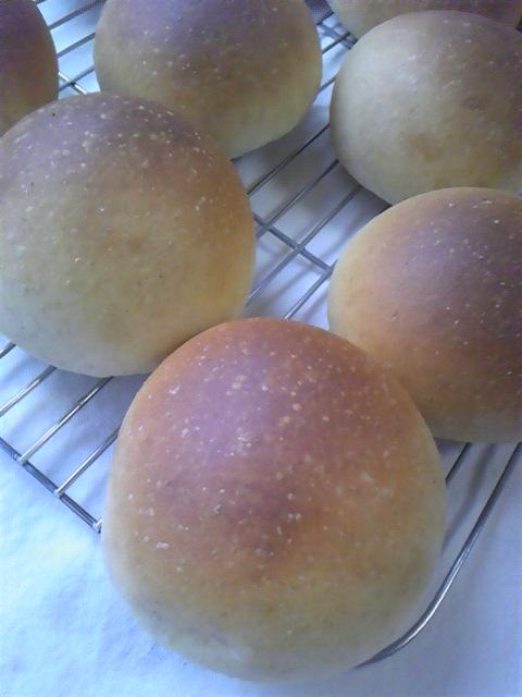 丸パン 全粒粉