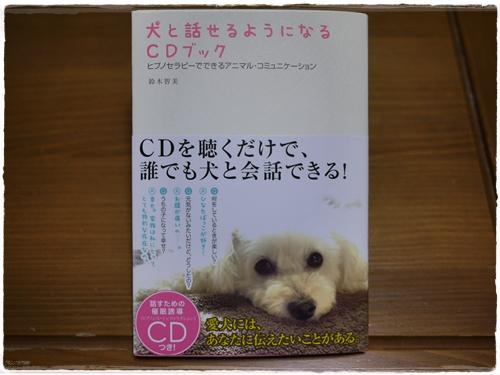 犬と話す1
