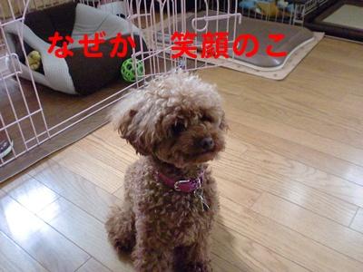 CIMG7856.jpg