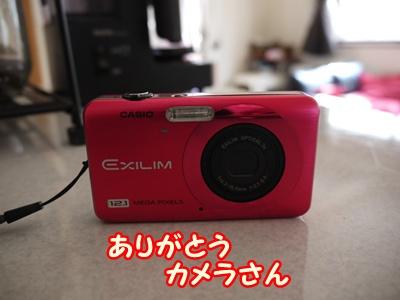 P1000454.jpg