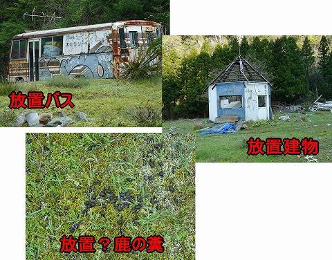 20100506_9.jpg
