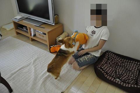 20100811_10.jpg