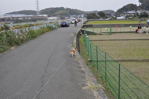 20101117_12.jpg