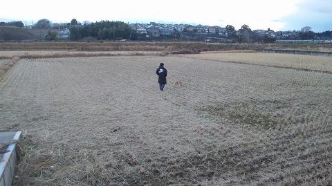 20110117_8.jpg