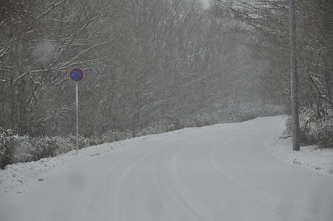 20110212_1.jpg