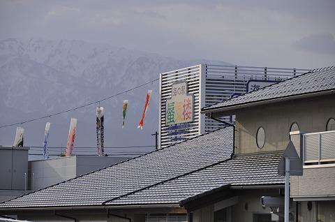 20110518_8.jpg