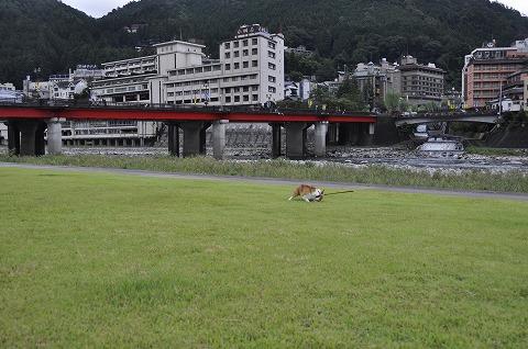 20111003_7.jpg