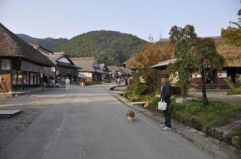 20111103_1.jpg