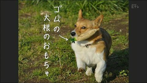 20120130_07_1.jpg