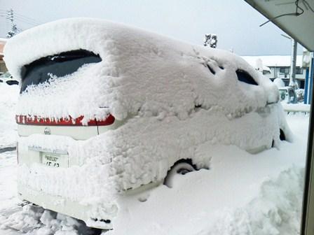 昨日の雪で