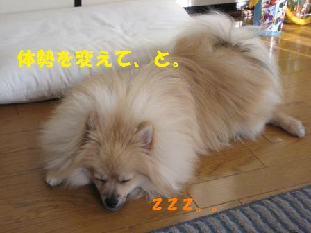 20141010_7.jpg