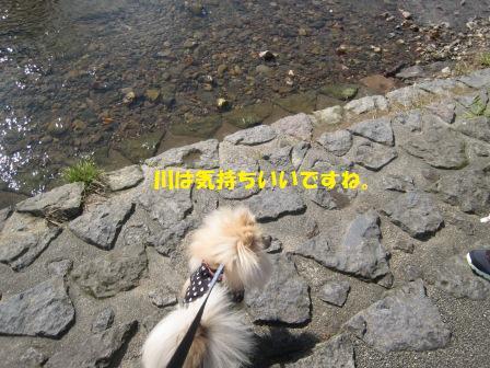 20141017_9.jpg