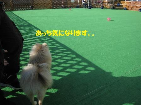 20141111_2_1.jpg