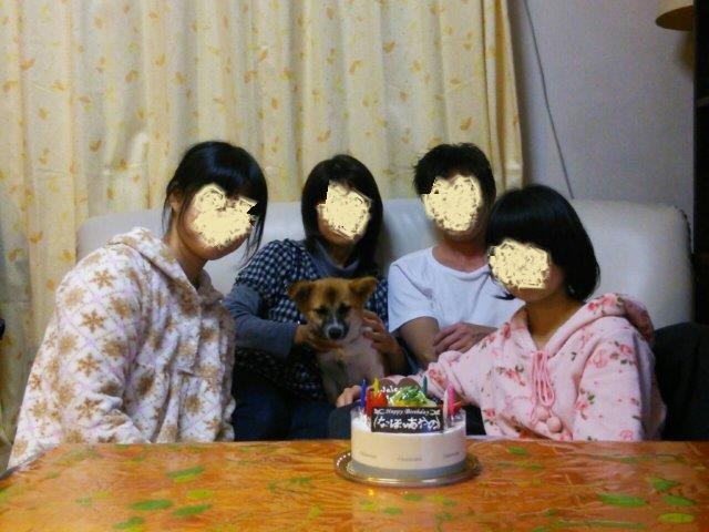 りん家族で誕生祝い