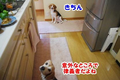 キッチン 6