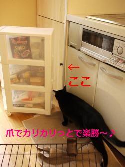 004_convert_20111228204940.jpg