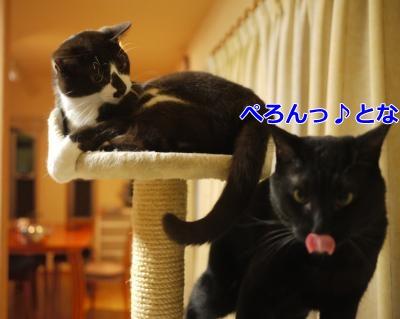 027_convert_20131218235800.jpg