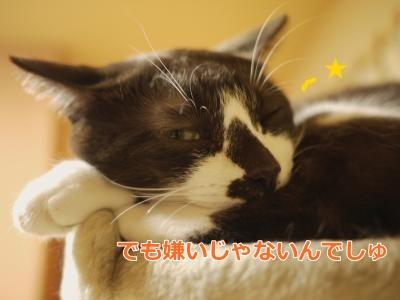 038_convert_20131219000244.jpg