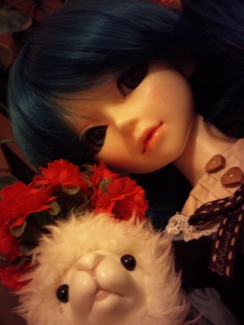 姫&アルパカ2
