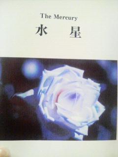 P1000800.jpg