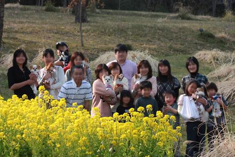 20110402syuugousyashin.jpg